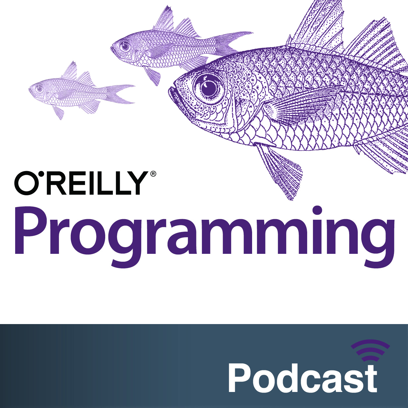 O'Reilly Programming