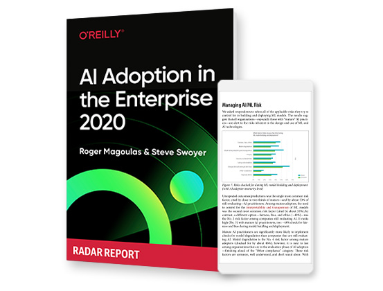 cover for: AI Adoption in the Enterprise 2020