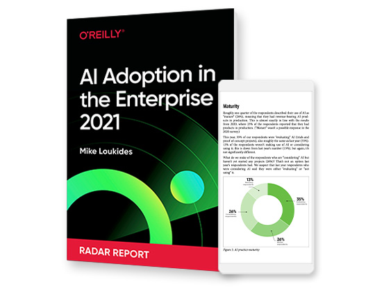 cover for: AI Adoption in the Enterprise 2021
