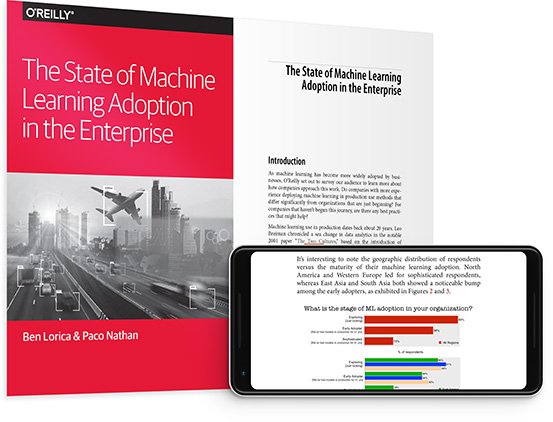 The State of Machine Learning Adoption in the Enterprise