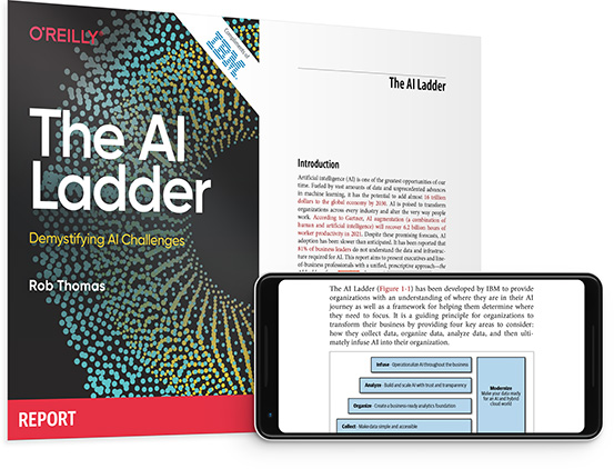 cover for: The AI Ladder